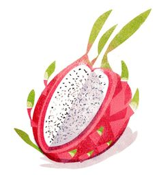 Jasmin Lai - I'm really into food illustrations these days Fruit Illustration, Simple Illustration, Food Illustrations, Graphic Design Illustration, Botanical Illustration, Pinterest Instagram, Fruit Painting, Food Drawing, Fruit Art