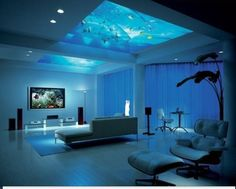 Fish tank in the roof!?!