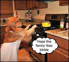 Golden in the kitchen