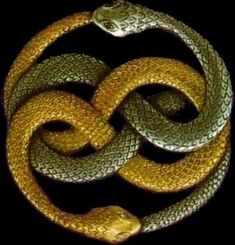 Aurin - two snakes biting each others tail. A symbol designed by Michael Ende - my all time favourite children's book author... - It shows two symbols of eternity weaved into each other. It resembles the never ending circle of life and death and could also be seen as some kind of ying & yang...