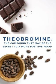 Imagine being able to enjoy chocolate every single day without the guilt while also taking your health to the next level. We're breaking down how theobromine, a compound in cacao may be a secret weapon for helping you feel your absolute best. Healthy Tips, Healthy Snacks, Chocolate Treats, Healthy Chocolate, Smart Snacks, Organic Supplements, Raw Cacao, Help Losing Weight, Weight Loss Snacks