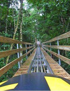 Bobsledding in Jamaica - through Mystic Mountain near Ocho Rios