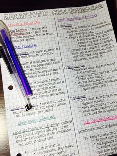 "success-without-a-mess: "" Loveeee when all my notes can fit on one page! Thank you to the person that thought of splitting a notes page down the middle- GENIUS """