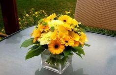 Yellow Flowers In Vase Wallpaper New Wallpaper Hd, Plant Wallpaper, Flower Wallpaper, Iphone Wallpaper, Calla Lily Flowers, Fresh Flowers, Yellow Flowers, Beautiful Flowers, Yellow Plants
