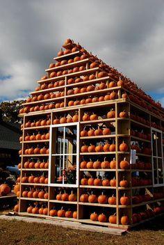 pumpkin house kenova wv - Google Search