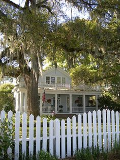 Georgia coastal cottage with picket fence and live oak tree.