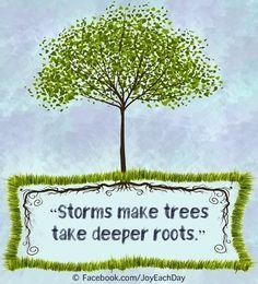 Storms make trees take deeper roots via www.Facebook.com/JoyEachDay