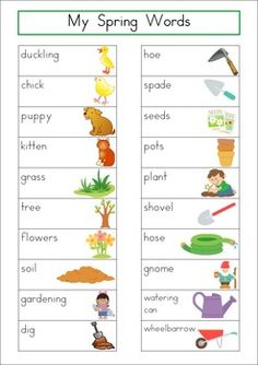 Word Wall - Spring Words {84 words}. Includes a personal word wall for students, a file-folder word wall for the writing/word work center and big cards for the classroom wall in color and black and white. Also comes with several different word wall worksheets.