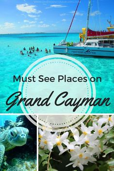 30 Epic Things to do in Grand Cayman - Travel tips - Travel tour - travel ideas Caribbean Vacations, Caribbean Cruise, Dream Vacations, Vacation Spots, Vacation Ideas, Places To Travel, Travel Destinations, Delicious Destinations, Grand Cayman Island