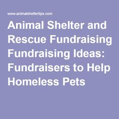 THE GOOD...Animal Shelter and Rescue Fundraising Ideas: Fundraisers to Help Homeless Pets
