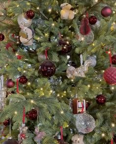 Christmas Music, Christmas Tree, Xmas Songs, Cello, Holiday Decor, Movies, Gifts, Xmas, Christmas