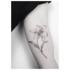 Fine line lily tattoo on the left inner arm. Tattoo artist: Jakub Nowicz