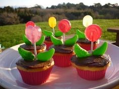 CHD: Birthday Girl and Cupcakes