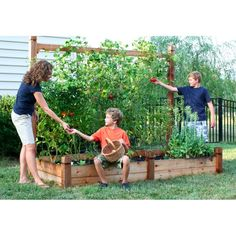 Raised Garden Bed with Trellis - I like this one too! want to build this but truly raised (on legs) for my upstairs deck!
