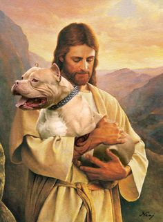 Jesus-Pitbull-dog-pray-for-him.jpg (587×800)