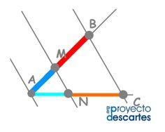 PROYECTO MISCELÁNEA. Proporcionalidad geométrica. Reconocer magnitudes ligadas mediante una relación de proporcionalidad. Aplicar el teorema de Thales a la construcción de segmentos proporcionales. Aplicar el teorema de Thales a la construcción del segmento cuarto proporcional y del segmento tercero proporcional. Dividir un segmento en proporción áurea. Construir un rectángulo áureo conocido el lado mayor o conocido el lado menor. Apreciar la belleza de la proporción áurea.