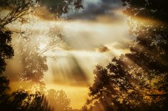 Double exposure of sunset Double Exposure, Natural World, Wildlife, Clouds, Sunset, Nature, Outdoor, Outdoors, Naturaleza