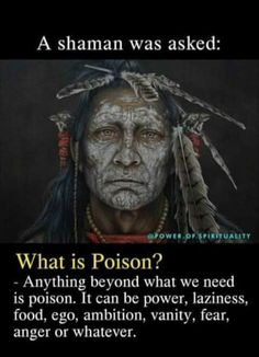 Wisdom Quotes, Words Quotes, Life Quotes, Sayings, Awakening Quotes, Spiritual Awakening, Spiritual Meditation, Native American Wisdom, American Indians