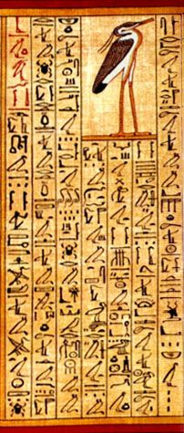 Papyrus of Ani. Heiroglyphs are so beautiful.