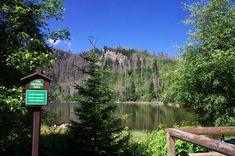 Plešné jezero lake, Sumava National Park, The Czech Republic Great Pictures, European Travel, Czech Republic, Prague, Cool Places To Visit, The Good Place, Travelling, National Parks, Outdoor Decor