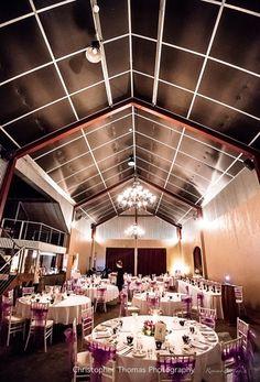 Flaxton Gardens - Maleny and Brisbane Wedding Photographer Christopher Thomas Photography
