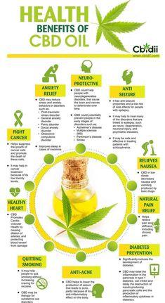 Weed Facts, Cannabis Edibles, Ganja, Medical Benefits Of Cannabis, Oil Benefits, Health Benefits, Salud Natural, Medical Marijuana, Clean Eating Tips