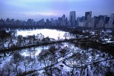 Central Park in snow. 1975. Photo taken from Central Park West.  Photograph by Daniel Sorine