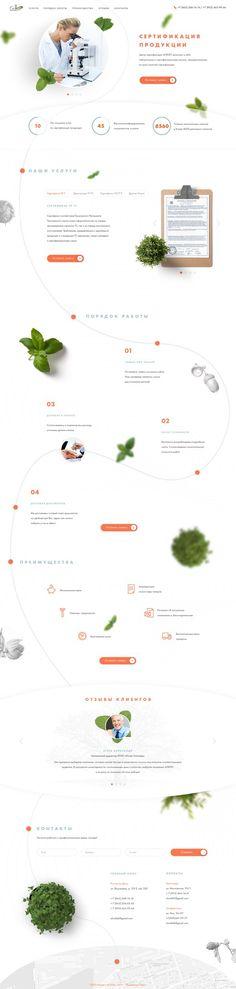 Фотографии MATRESHKA. Design & Marketing – 2 альбома