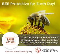 BEE Protective :)