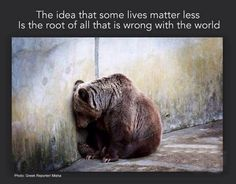 The idea that some lives matter less....