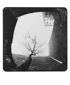 Egons Spuris - Latvian Fine Art Photographer Fine Art, Photography, Black And White Photography, Photograph, Fotografie, Photoshoot, Visual Arts, Fotografia