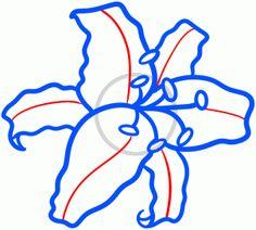 how to draw a stargazer lily step 5