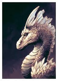 Résultats de recherche d'images pour «dragon blanc»