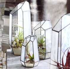 Roost Crystal Stained Glass Terrariums