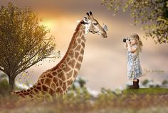 Items similar to Giraffe Digital Background on Etsy Fairy Photography, Wild Photography, Photography Tutorials, Giraffe Photos, Giraffe Art, Photoshop Course, Image Sites, Surreal Artwork, Themes Photo