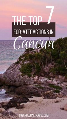 Look at our top 7 ecotourism attractions in Cancun! | TBEX | Akumal | Place of the Turtles | Underwater Museum | Jason DeCaires Taylor | Cenotes | Cultural Travel | Coba | Mayan History | Punta Laguna Nature Reserve | Rio Secreto | Whale Sharks | Yucatan