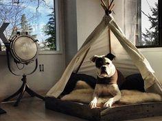 Ein Hund muss es in seinem Bett bequem haben und darin gut schlafen können. Wer ihm etwas besonderes bieten möchte, baut es einfach selbst. Hier 13 Ideen.