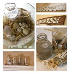 Seashell Displays by HOMEWARDfound Decor.
