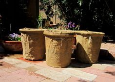 Terrace Garden Planters Burlap Projects Growing Herbs Planting Veggies Container Porch Balcony