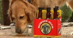 New Bowser Beer is for the dogs