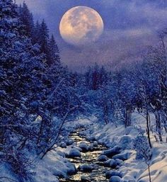 Full Moon Today, Full Moon In Cancer, Enjoying The Small Things, Moon Pictures, Moon Pics, Winter Beauty, Winter Solstice, Next Week, Warm And Cozy
