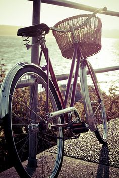 Always wanted a bike like this with a basket AND a horn!!!