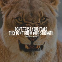 Your strength wins