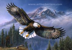 wild eagle sketches | Wildlife art prints plus original paintings with a wide selection from ...