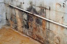How to Seal Your Basement from Outside Moisture | Stretcher.com - Eliminating a damp basement