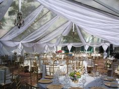 Beautiful wedding Lunch and reception under a clear tent at the plaza adjacent to the Stranahan House