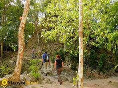 Amazing Guatemala Jungle Tours to El Mirador www.martsam.com