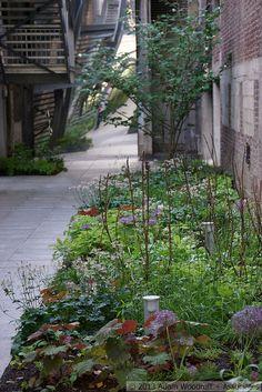 5 Culture Chanel Exhibit, The Garden // The Palais de Tokyo, Paris // Designer: Piet Oudolf // Images: 2013 Adam Woodruff + Associates Urban Landscape, Landscape Design, Landscape Engineer, Woodland Plants, Paris Design, Exhibit, Garden Landscaping, Flora, Chanel