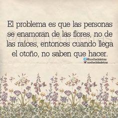 〽️El problema es que las personas se enamoran de las flores, no de las raíces...