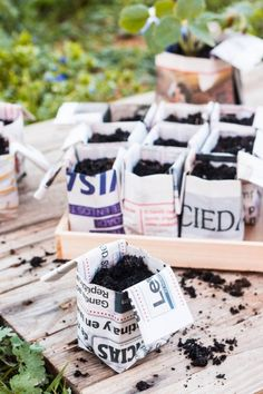 Quick, DIY, Origami Newspaper Pots (Great for seedlings and eco-friendly containers for craft supplies, gifts, samples, or favors!) - Oh, The Things We'll Make!
